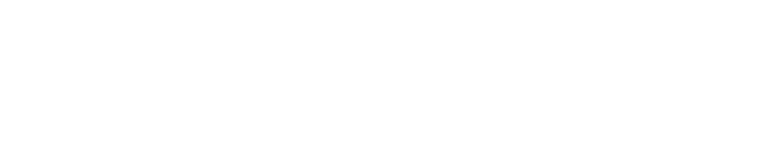 Disfold – Português